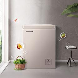 Ronshen容声BD/BC-100MSYA冰柜冷柜家用商用冷藏冷冻节能迷你小型卧式100升 899元