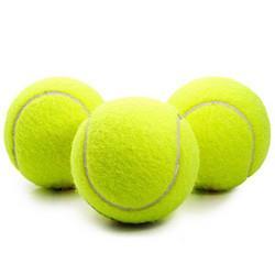 DAODANGUI捣蛋鬼狗狗玩具球金毛泰迪弹力球耐咬磨牙网球宠物幼犬拉布拉多小狗训练宠物网球1个装 6.9元
